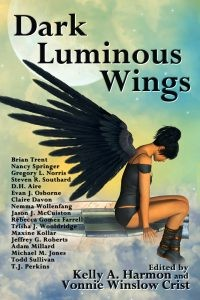 DARK LUMINOUS WINGS